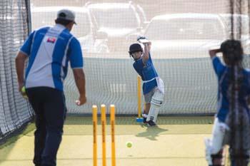 Cricket Drive shot
